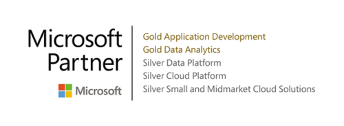 Microsoft Partner software development